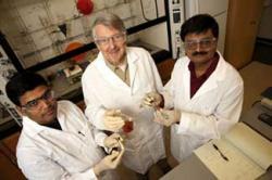 Dr. Ed Biehl (center) with Drs. Sukanta Kamila (left) & Haribabu Ankati